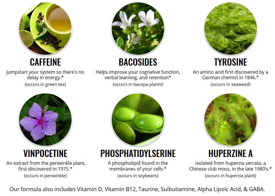 OptiMind Ingredients